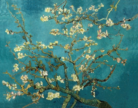 Branches of an Almond Tree in Blossom par Vincent van Gogh