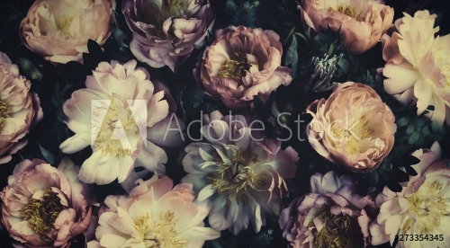 Vintage bouquet of beautiful peonies on black. Floristic decoration. Floral background. Baroque old fashiones style. Natural flowers pattern wallpaper